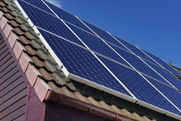 Solar panel bird proofing glasgow